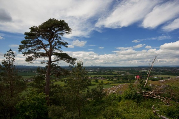 View from Haughmond Hill